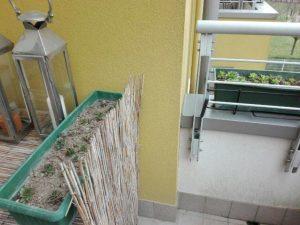 Terrazzo con vasche di piante grasse